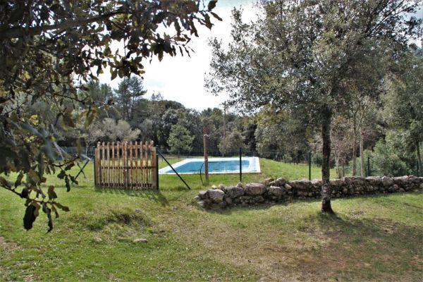 Jardí - piscina vallada